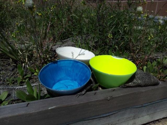 bug bowls